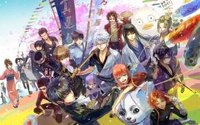 Picture alien, anime, dog, samurai, ninja, assassin, manga, shinobi, Gintama, japanese, kimono, kunoichi, Gintoki, shinsengumi