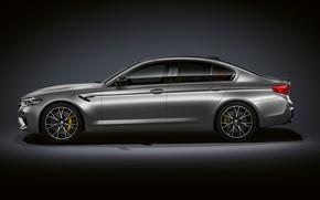 Picture grey, background, BMW, profile, sedan, dark, 4x4, 2018, 625 HP, four-door, M5, V8, F90, 4.4 …