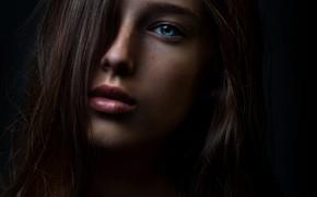 Picture macro, portrait, sponge, the beauty, Israel, Tanya, Lashon Rise