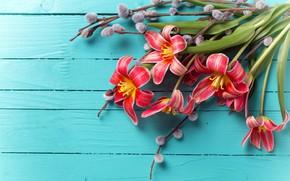 Wallpaper bouquet, Board, flowers