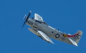 Wallpaper flight, cabin, Douglas AD-4N, Skyraider
