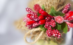 Picture wallpaper, object, flower, decoration