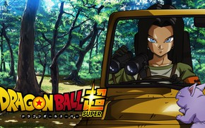 Picture car, game, alien, anime, martial artist, manga, Dragon Ball, strong, Dragon Ball Super, japonese, Android …
