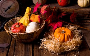 Picture leaves, basket, pumpkin, straw, the gifts of autumn