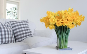 Picture flowers, house, daffodils yellow