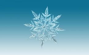 Wallpaper symmetry, pattern, snowflake, ice, winter
