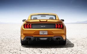 Picture car, Mustang, Ford, Ford Mustang, desert, yellow, horse, stallion, sabaku, Ford Mustang V8 GT, Ford …