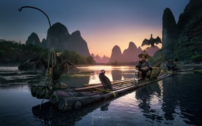Picture birds, river, people, boat, boats, China, fishermen, the raft, cormorants, district Guangxi Joins