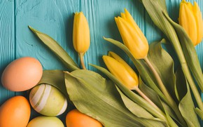 Picture eggs, Easter, tulips