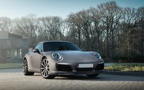 Picture Porsche, house, Gray, 991