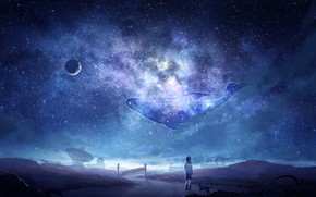 Picture cat, space, boy, kit, the milky way, Arsh