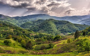 Picture greens, forest, the sun, clouds, trees, mountains, field, Serbia, Zlatibor, Bajina Bauta