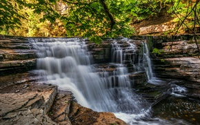 Picture forest, trees, landscape, rocks, England, waterfall, stream, Yorkshire