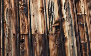 Picture black, wood, brown, pattern