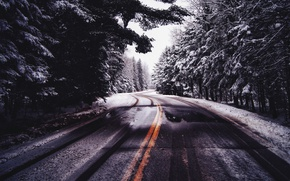 Wallpaper cold, winter, road, forest, nature