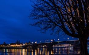 Picture night, bridge, lights, river, Germany, Mainz
