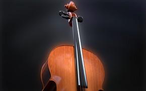 Wallpaper tool, strings, music, cello