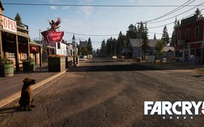 Picture road, dog, Far Cry 5