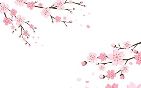 Picture background, Wallpaper, flowers, blossom, background, cherry, texure
