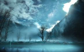 Picture Fog, Night, Lake, Trees, Landscape, Stars