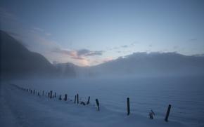 Wallpaper Winter, Fog, Frost, Winter, Frost, Snow, Snowy Field, Fog, The snow, Snow field, Winter morning, ...