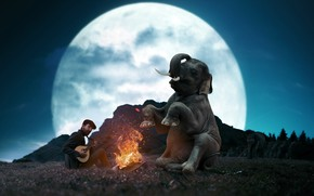 Picture people, elephant, guitar, the fire
