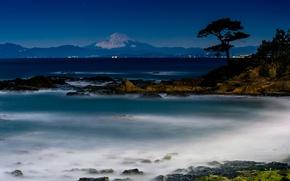 Picture sea, the sky, landscape, night, tree, shore, beauty, the volcano