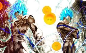 Picture game, anime, manga, japanese, Son Goku, Vegeta, Dragon Ball, Goku, Ashura, Dragon Ball Super
