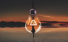 Picture cat, the sky, light bulb, water, sunset, nature