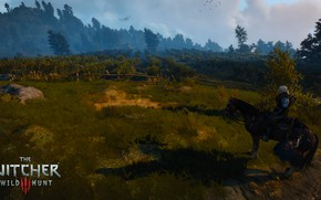Picture the Witcher, Geralt of rivia, the Witcher 3 wild hunt
