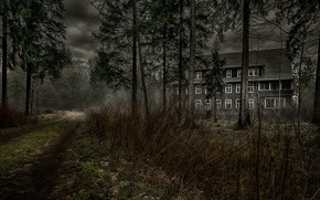 Picture road, forest, house, the darkness
