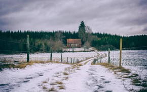 Picture winter, road, field, snow, house, the fence, Homeland