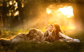 Picture kiss, dog, boy, girl