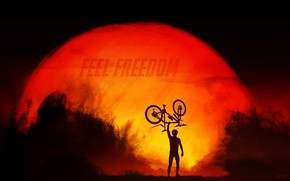 Wallpaper freedom, the sun, sunset, bike, sport, silhouette, cyclist, sport, bike, bicycle, bike, sunset, freedom, cycle, ...