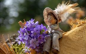 Picture Flowers, Bouquet, Dwarf, Figure, Violet