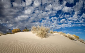 Picture the sky, clouds, desert, USA, New Mexico, White Sands