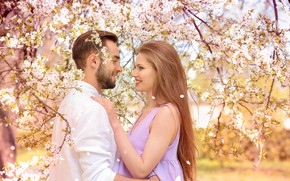 Picture girl, trees, love, flowers, branches, woman, spring, garden, pair, male, guy, two, flowering, lovers, bokeh