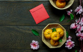 Picture flowers, Background, Mandarin, Citrus