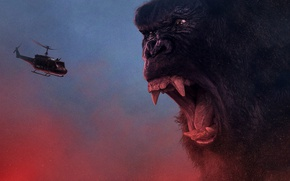 Wallpaper King Kong, cinema, movie, gorilla, fang, film, angry, strong, fury, Kong, Kong: Skull Island, Skull ...