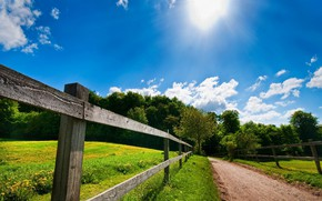 Picture road, field, summer, trees, fence