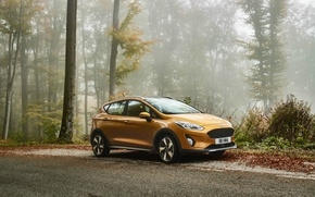 Picture Ford, Golden, Fiesta, Active, hatchback, 2017