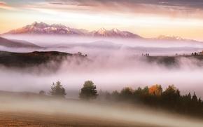 Picture autumn, mountains, fog, morning, Carpathians