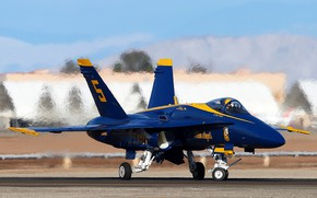 Picture Blue Angel, F/A-18, The Blue Angels, aviation group