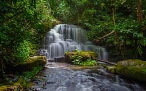 Picture forest, landscape, river, rocks, waterfall, summer, Thailand, forest, tropical, river, landscape, beautiful, waterfall, tropical