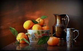 Picture sheet, citrus, pitcher, still life, Mandarin