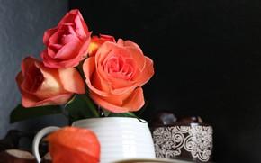 Wallpaper book, roses, vase, bokeh