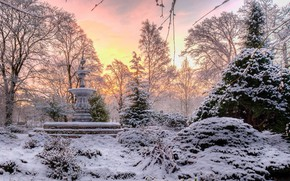 Picture winter, the sky, snow, trees, beautiful, fountain