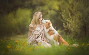Wallpaper dog, flowers, bokeh, mood, girl, lawn, dandelions, friendship, friends, grass, plaid, spring