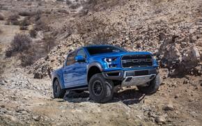 Wallpaper Ford, the roads, Raptor, pickup, F-150, SuperCrew, 2019