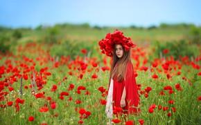 Wallpaper nature, field, girl, Maki, flowers